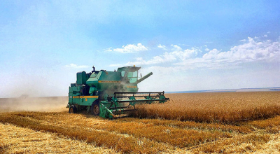 On the progress of the harvesting campaign in Minsk Oblast on 25.07.2019. The best crews, the leaders in yield
