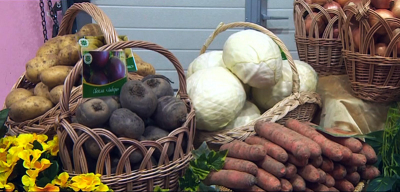 Arkhangelsk Region interested in agricultural products from Minsk Region